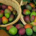 Isoguí - an offering of fresh fruit from the same tree